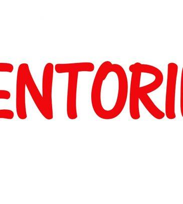 MENTORIA PRESENCIAL E ONLINE